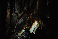 Formazione della caverna di Oriente delle caverne di Jenolan fotografia stock