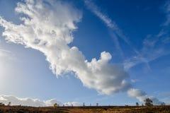 Formazione della nuvola di autunno contro cielo blu sopra l'inseguimento di Cannock Fotografia Stock Libera da Diritti