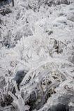 Formazioni di ghiaccio Immagine Stock Libera da Diritti