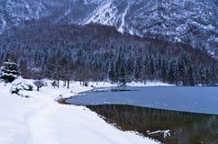 Formazione di ghiaccio su un lago Bohinj in alpi slovene Immagini Stock