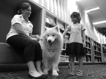 Formazione in materia di sicurezza del cane di SPCA Fotografia Stock