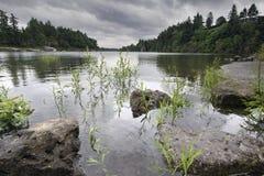 Formazione rocciosa al fiume di Willamette Fotografie Stock