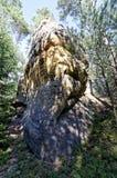 Formazione rocciosa alta ed unica con le ombre degli alberi che cadono su  Immagini Stock Libere da Diritti