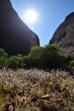 Formazione rocciosa di Kata Tjuta dell'Australia centrale Immagine Stock Libera da Diritti