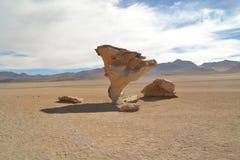 Formazione rocciosa di pietra dell'albero nel deserto Immagini Stock Libere da Diritti