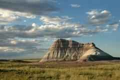 Formazione rocciosa - foresta Petrified immagini stock libere da diritti