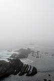 Formazione rocciosa lungo la linea costiera nebbiosa Fotografie Stock Libere da Diritti