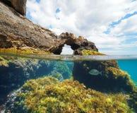 Formazione rocciosa naturale con le alghe e un pesce subacqueo immagini stock