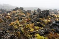 Formazione rocciosa vulcanica al parco nazionale di Tongariro Fotografia Stock