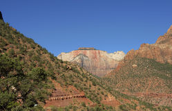 Formazione Zion National Park del cappuccio del tempio Fotografie Stock Libere da Diritti