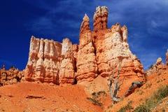 Formazioni d'imposizione di erosione nel giardino della regina, Bryce Canyon National Park, Utah immagine stock