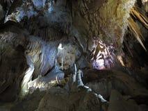 Formazioni della caverna con le caverne di Jenolan - di Helictites Fotografia Stock