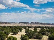 Formazioni nell'alto deserto immagine stock