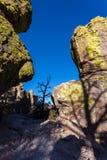 Formazioni rocciose dai lati di cielo blu e dell'albero Immagini Stock Libere da Diritti