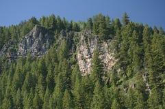Formazioni rocciose e sempreverdi Immagine Stock
