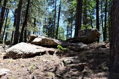 Formazioni rocciose nel lago canyon di legni, la contea di Coconino, Arizona, Stati Uniti fotografie stock libere da diritti