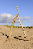 Formby Images stock