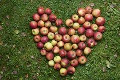 Forme d'amoureux faite de pommes Images libres de droits