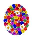 Forme d'oeufs faite de belles fleurs fraîches Photographie stock
