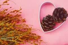 Forme de coeur, cône de pin et fleurs sèches pour le concept saisonnier de célébration Images stock