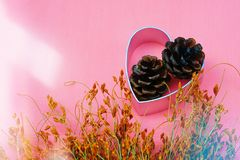 Forme de coeur, cône de pin et fleurs sèches pour le concept saisonnier de célébration Photos libres de droits
