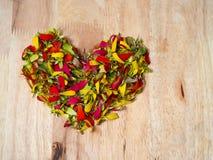 Forme de coeur d'amour de fleur colorée Images libres de droits