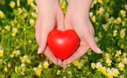 Forme de coeur dans les mains femelles Photos libres de droits