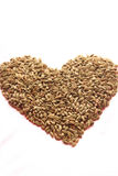 Forme de coeur de cardamome Image stock