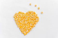 Forme de coeur des graines de maïs Image libre de droits
