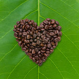 Forme de coeur des grains de café rôtis sur le fond de feuille Photo libre de droits