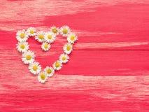 Forme de coeur des marguerites Photos libres de droits