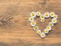 Forme de coeur des marguerites Image libre de droits