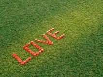 Forme de coeur faite à partir de la bougie sur l'herbe artificielle Image libre de droits