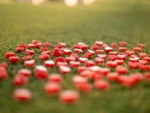 Forme de coeur faite à partir de la bougie sur l'herbe artificielle Photographie stock libre de droits