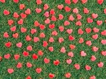 Forme de coeur faite à partir de la bougie sur l'herbe artificielle Photo stock