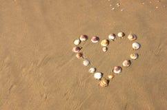 Forme de coeur faite à partir des coquilles de mer sur la plage sablonneuse. pièce pour le texte. Photos libres de droits