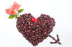 Forme de coeur faite d'haricots Photo stock