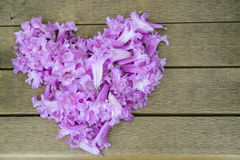 Forme de coeur faite de fleur pourpre Image libre de droits