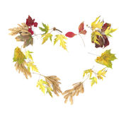 Forme de coeur faite de lames colorées d'automne Photos stock
