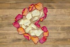 Forme de coeur faite de pétale de rose sec Images stock