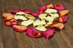 Forme de coeur faite de pétale de rose sec Photos libres de droits
