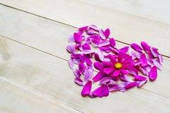 Forme de coeur de fleur étendue sur le fond en bois Photo stock