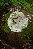 Forme de coeur sur la roche images stock