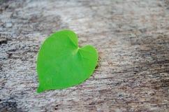 Forme de coeur sur le vieux bois Photo libre de droits
