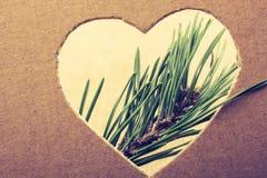 Forme de coeur vue par feuilles photo stock