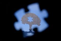 Forme de puzzle de cuvette d'arbre de casse-tête Photos stock