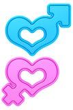 Forme del cuore con i segni maschii e femminili di genere isolati su bianco Fotografie Stock