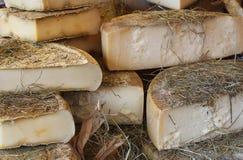 Forme del formaggio nella paglia Immagine Stock