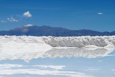Forme del sale nel lago del sale fotografia stock libera da diritti