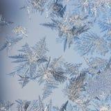 Forme della neve Fotografie Stock Libere da Diritti